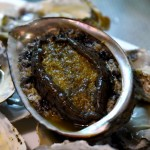 What is Awabi (Abalone) ?
