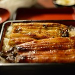 What is Unagi (Freshwater Eel) ?