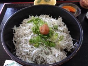 shirasu don rice bowl