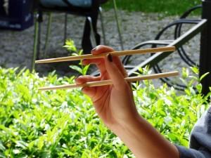 how-to-use-chopsticks