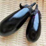 What is Nasu (Japanese Eggplant)?