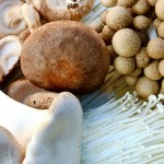 What is Kinoko (mushrooms)?