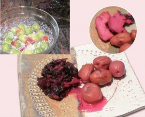 umeboshi-recipe